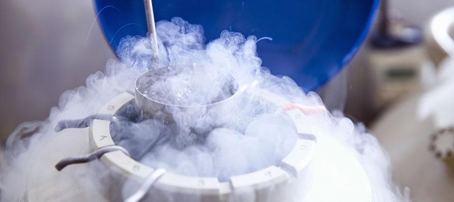 congelamento-de-embrioes